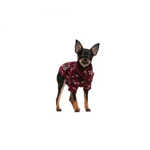 The Barking Boutique Miniature Pinscher